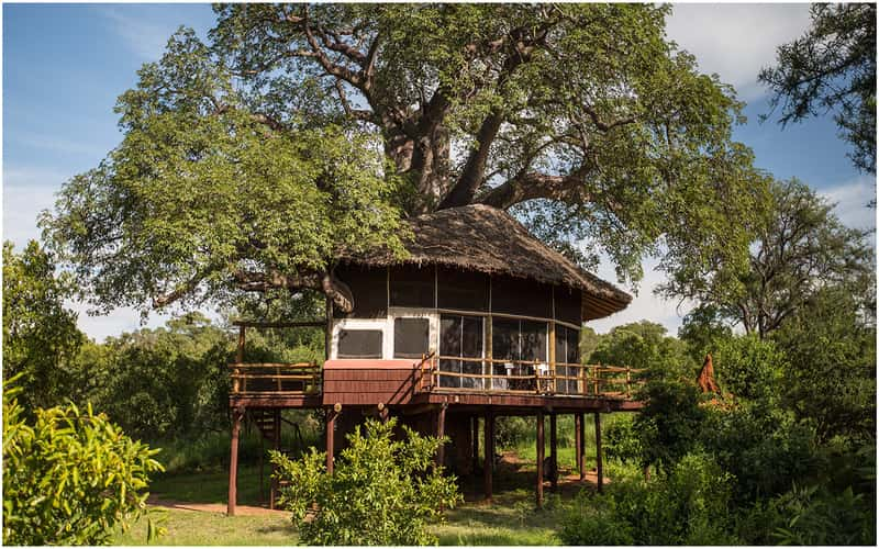 Tarangire National Park, architecture commerciale en Afrique